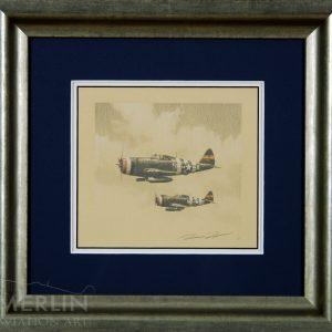 P-47 by Richard Taylor