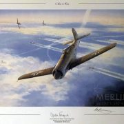 Air Aces Fw 190 D-12