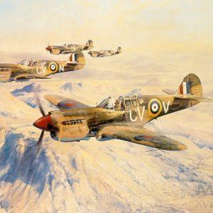 Desert Hawks by Robert Taylor